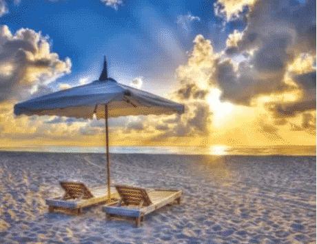 佛州棕榈滩威尔尼斯度假酒
